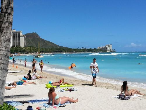Waikiki Shore Beachfront - Honolulu, HI 96815