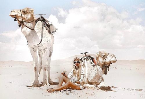 Фото отеля Ali & Sara's Desert Palace