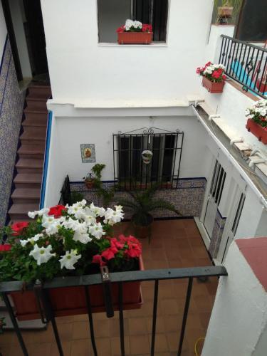 Apartamentos en la Magdalena