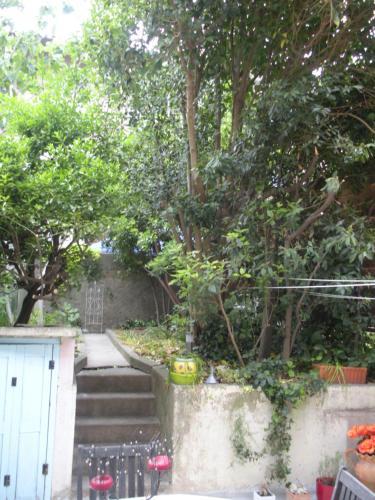 Chez Clo - Location saisonnière - Carcassonne