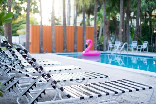 Roam Miami - Miami, FL 33128