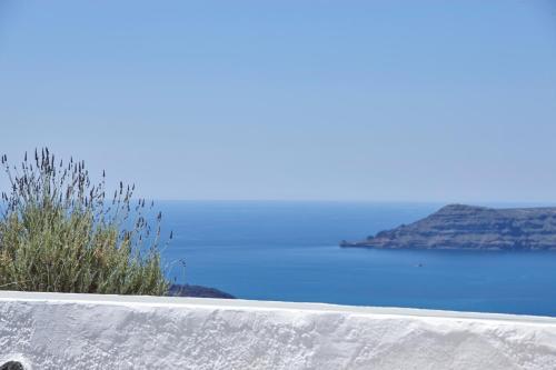Foto - Nautilus Villa