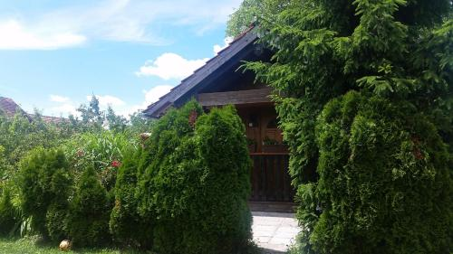 Accommodation in Domžale