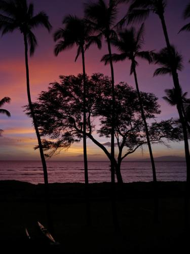 2 Bedroom Condo In Kihei With Ocean Views