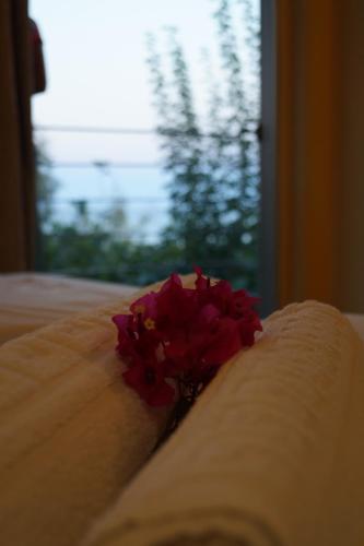 . Lagounaris Beach Hotel