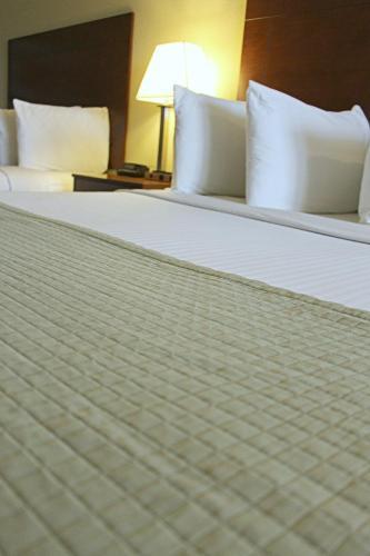 Фото отеля Southern Inn & Suites Lamesa