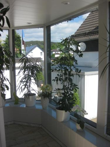 Hostal Pension Haus Schnittler