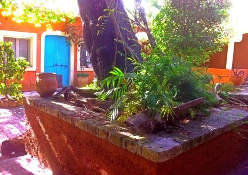 . Corfu Town Garden Cottage
