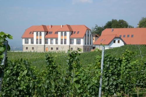 Weingut Taggenbrunn - Hotel - Sankt Veit an der Glan