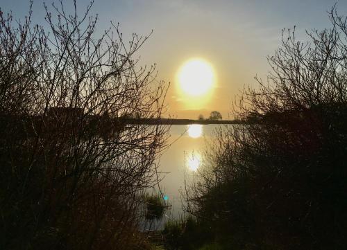 Ostsee Reetkate