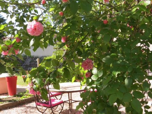 Le Jardin - Accommodation - Laragne