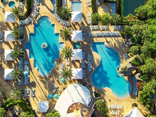 Hilton Grand Vacations at SeaWorld photo 31