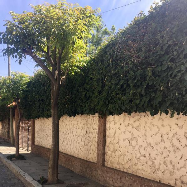 Apartamento con jardin