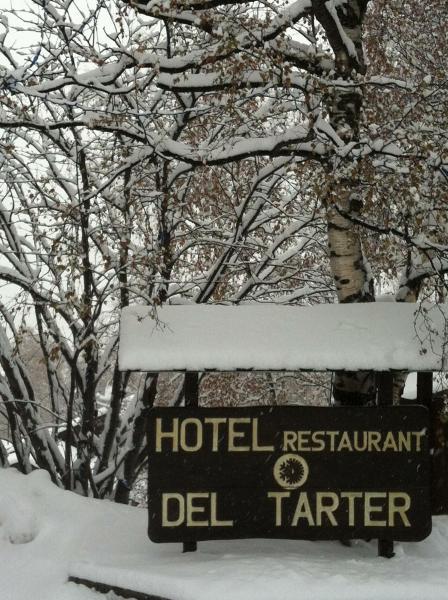 Del Tarter