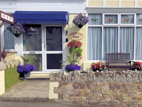 Trevellis Guest House Newquay