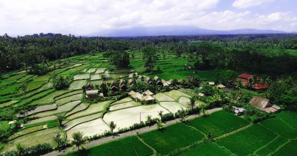 De Klumpu Bali Eco Tradi Place