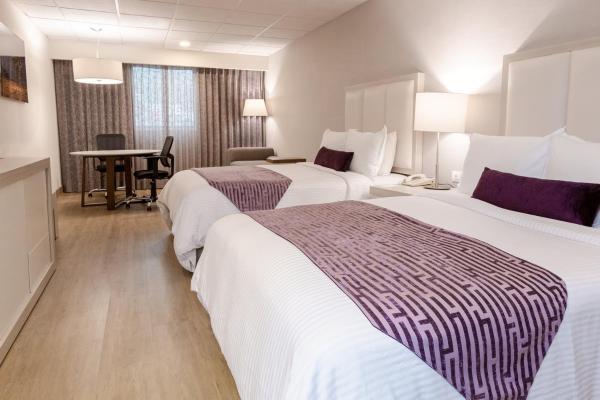Antarisuite Galerias Hotel Monterrey