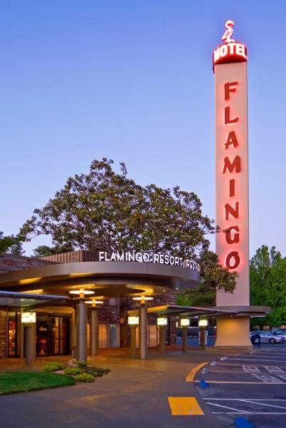Flamingo Resort Hotel & Conference Center