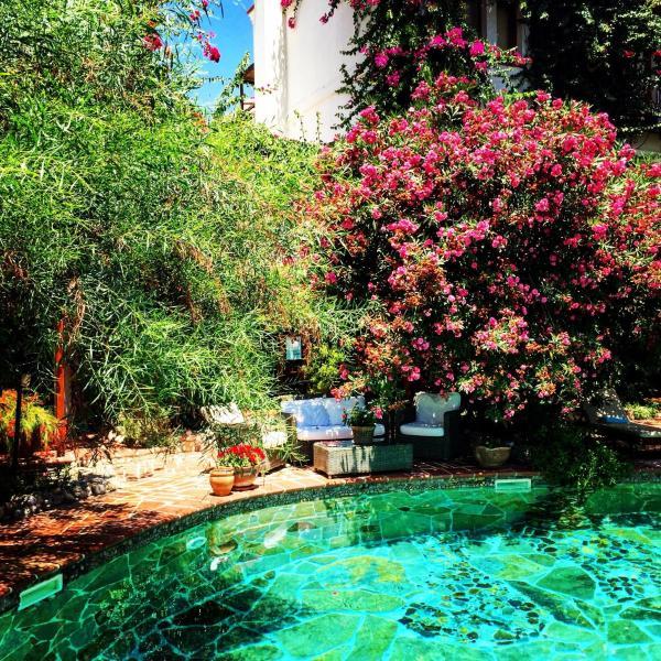El Vino Hotel_1