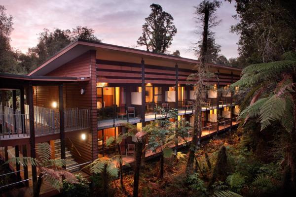 Te Waonui Forest Retreat_1
