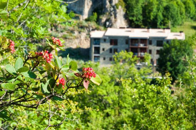 Apartaments Flor De Neu