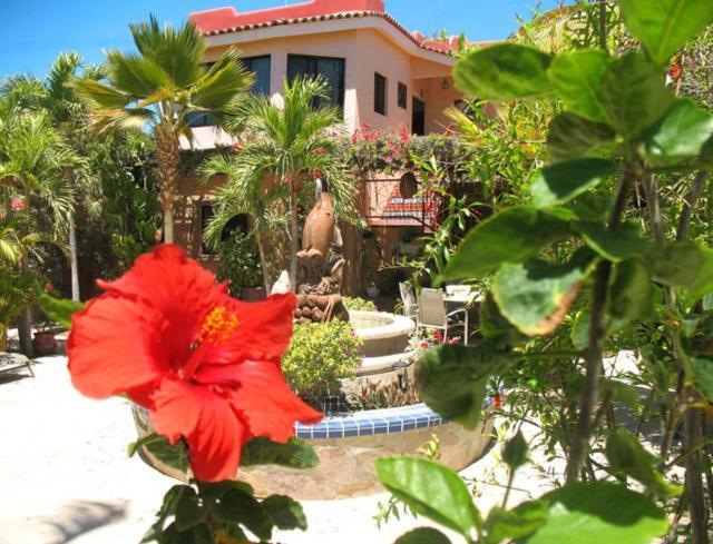 Hacienda de Palmas Hotel