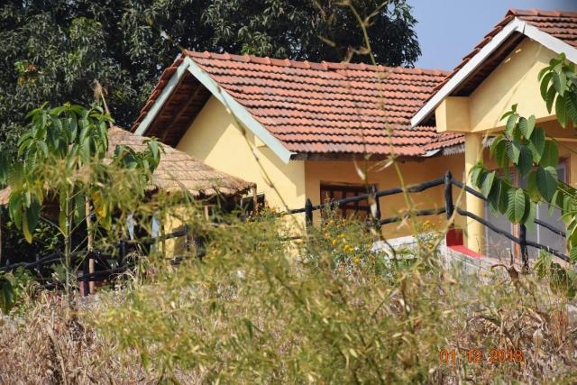 The Jungle homestay & resort