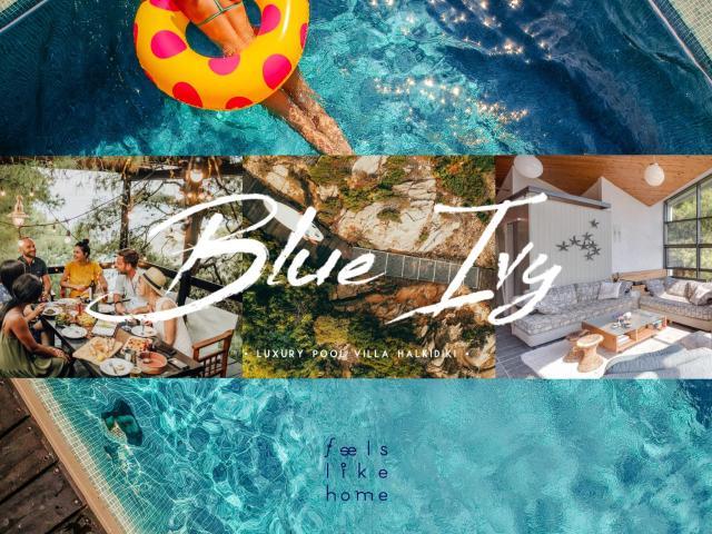#FLH - Blue Ivy