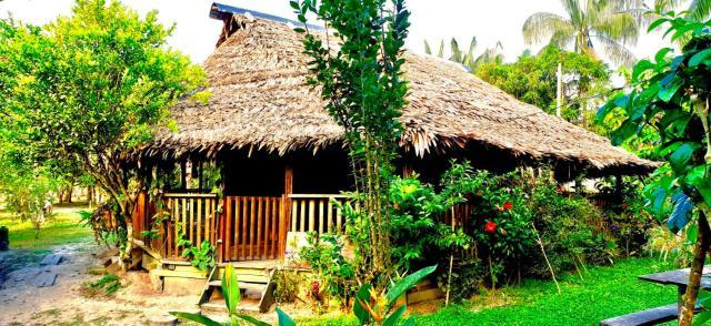 Bungalow Lodge In The Jungle (Cabaña Privada)