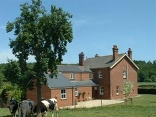 Mill Farm
