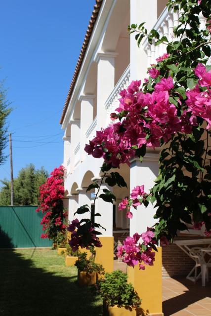 Apartamentos Bolonia Paraiso