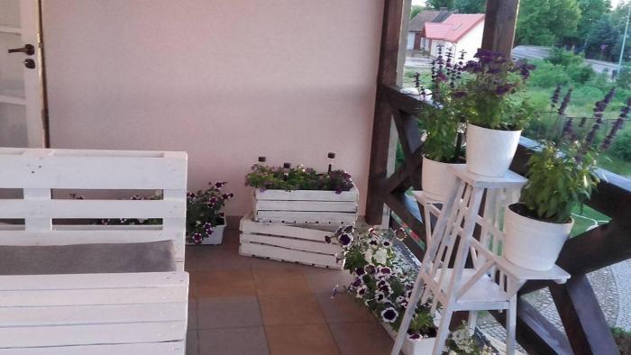 Pokoje w miasteczku przy Puszczy Bialowieskiej