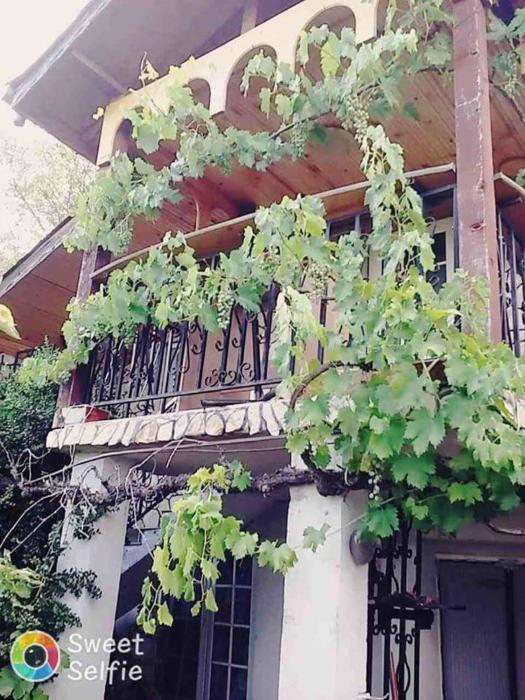 Apartament Mira
