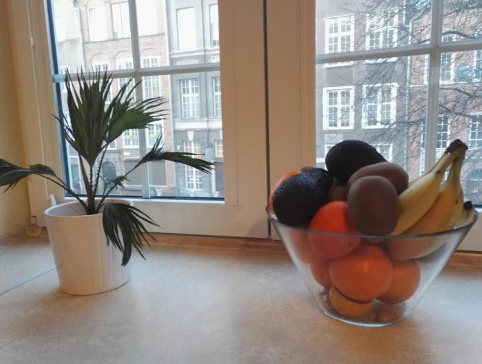 Apartament Ducha 3