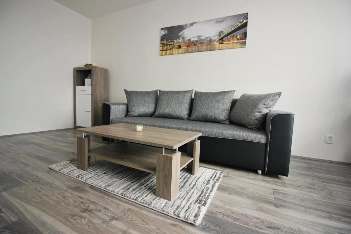 Deluxe Apartment Hornopolní