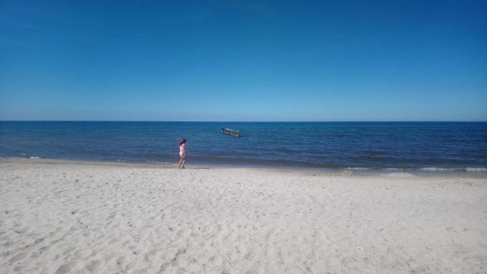 Morze i Las