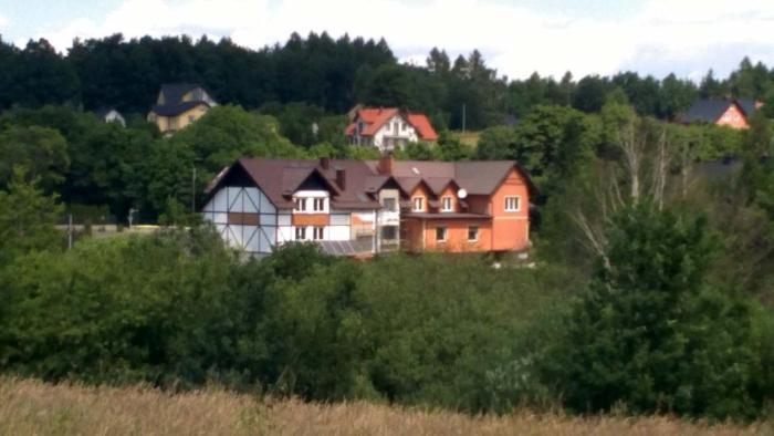 Fenix Grzybno