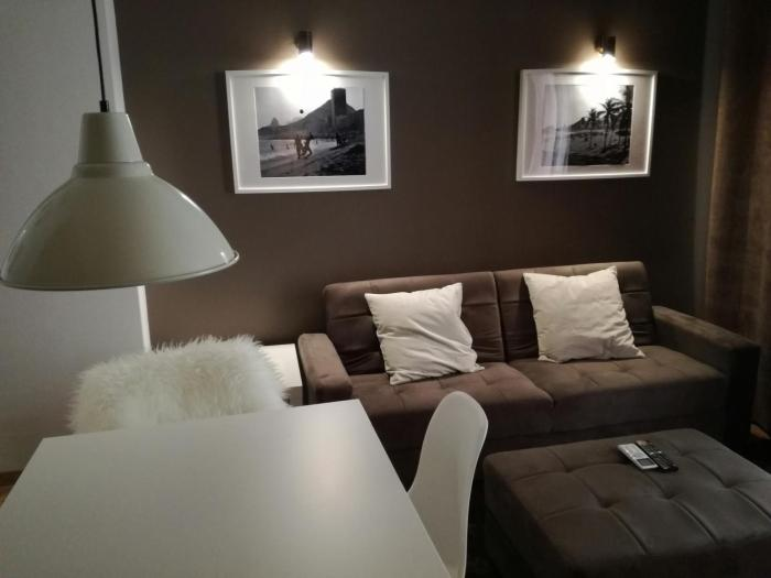 Chic apartment downtown