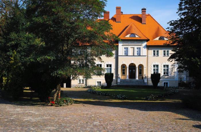 Pałac w Dębinie