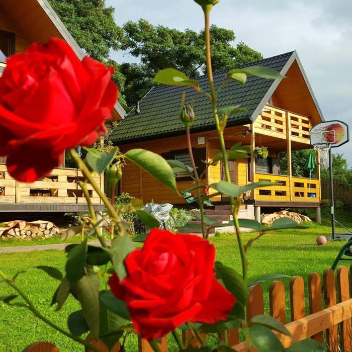Domki Letniskowe Zbyszko