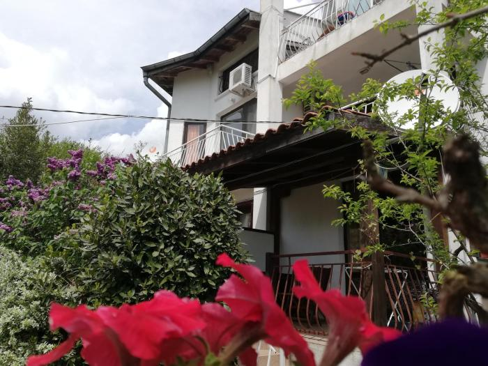 Guest House Fanny Sinemorets