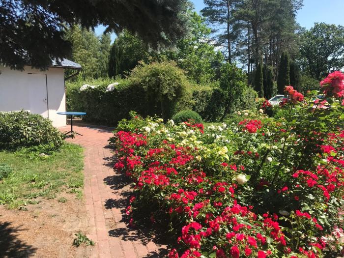 Ranczo Róż WiTa