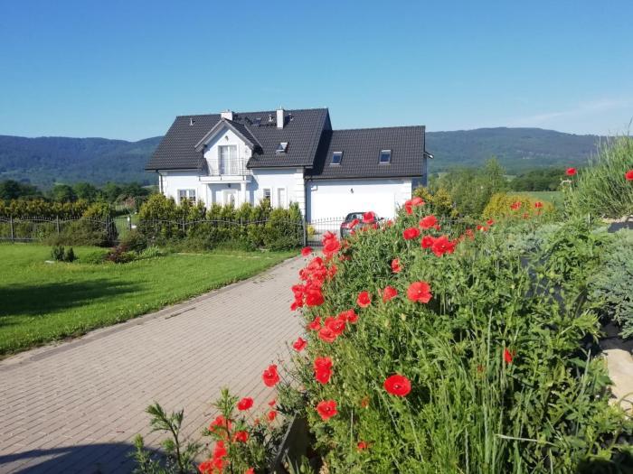 Villa Borówka