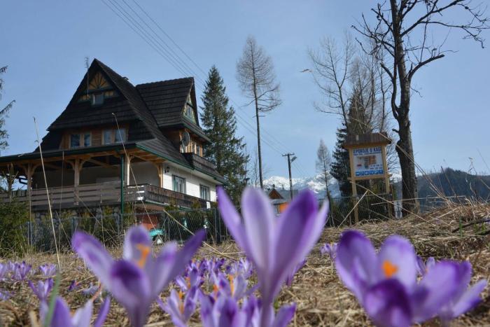 Pokoje u Kasi przy Dol Chochołowskiej