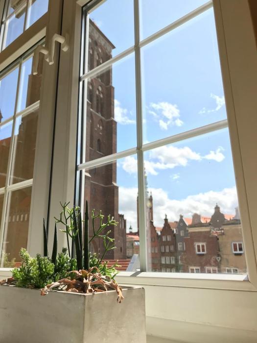 Mariacki View Apartment