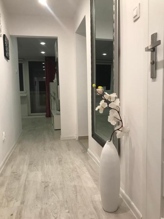 Comfortable Apartament
