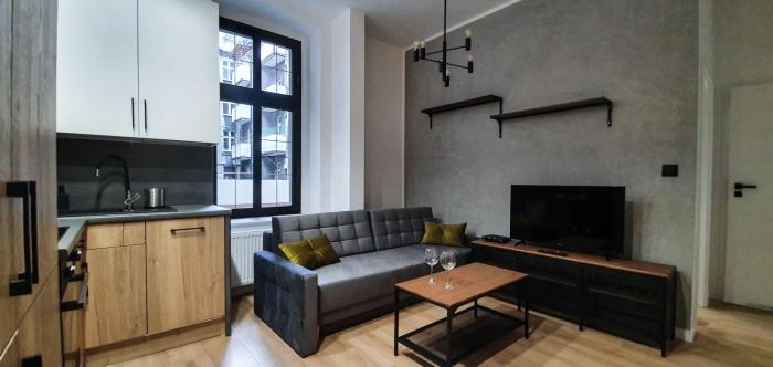 Loft style apartment in Zabrska street