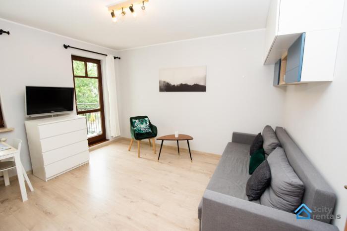 Studio Apartment Karlikowski Młyn