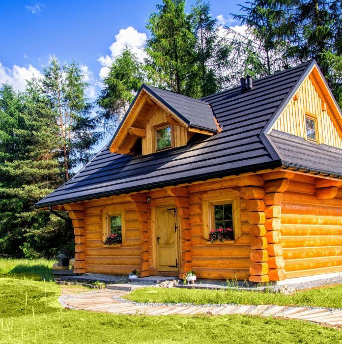 Dom z drzew