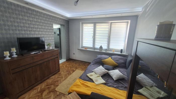 Apartament Park Saski